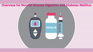 Normal Glucose Digestion and Diabetes Mellitus
