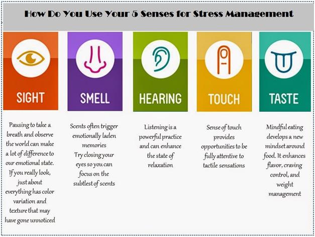 Senses for Stress Management